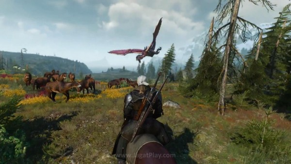 The witcher 3 wild hunt (71)