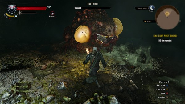 The witcher 3 hearts of stone  (12)