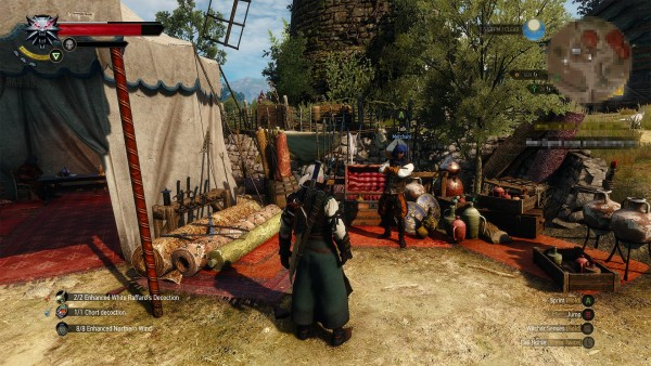 The witcher 3 hearts of stone  (13)