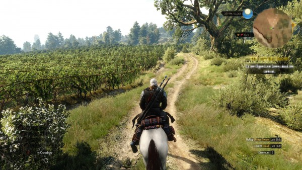 The witcher 3 hearts of stone  (4)
