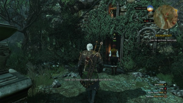 The witcher 3 hearts of stone  (7)