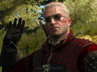 The witcher 3 hearts of stone 601