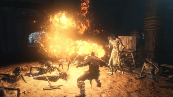Ashes of Ariandel (13)