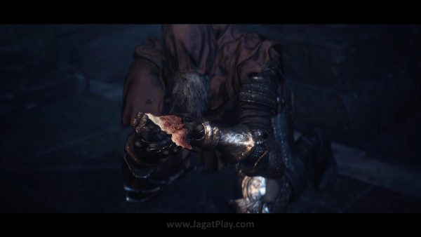 Ashes of Ariandel (15)