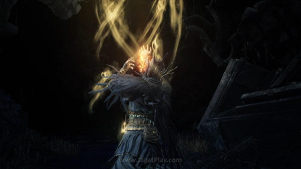 Ashes of Ariandel (17)