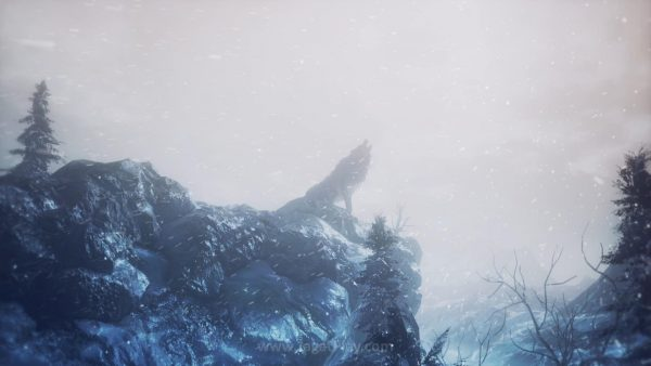 Ashes of Ariandel (5)