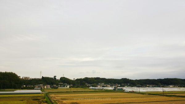 Suasana kota kota satelit di sekitar bandara Narita.