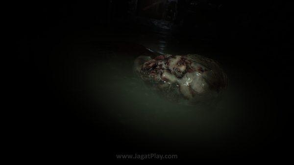 Resident Evil 7 jagatplay (16)