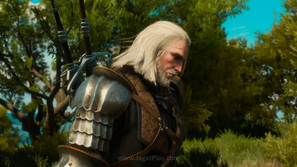 The Witcher 3 Blood and Wine 130