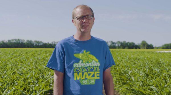 Bukan trailer atau screenshot, Bioware mempromosikan Anthem dengan menciptakan labirin lahan jagung di kota asal mereka, Edmonton.
