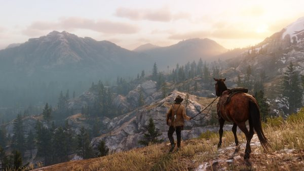 red dead redemption 22