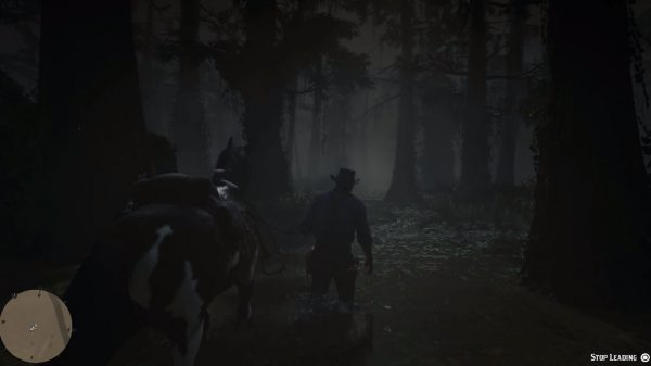 RDR2 new gameplay3