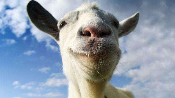 goat simulator 600x338 1