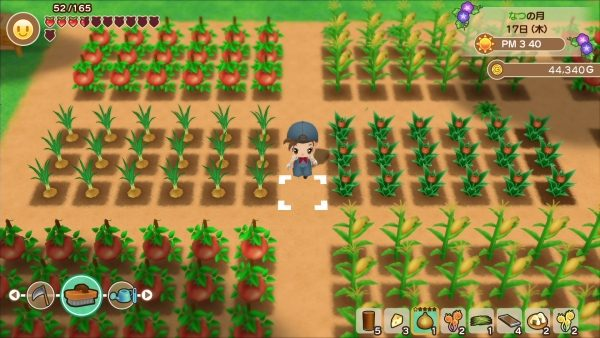story of seasons mineral town new4