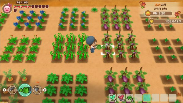 story of seasons mineral town2
