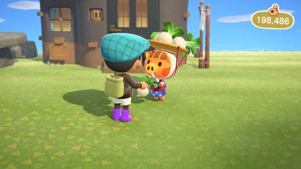Animal Crossing New Horizons jagatplay part 2 22