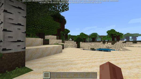 Minecraft RTX beta jagatplay 15