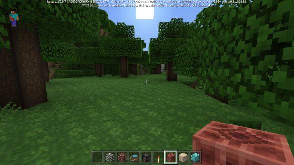 Minecraft RTX beta jagatplay 46
